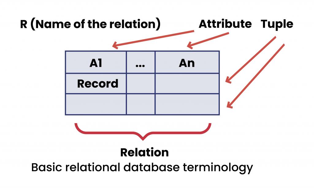 Basic relational database terminology